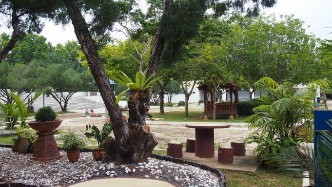 pokok-teduhan-di-taman