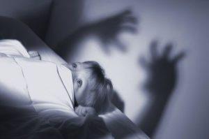 mimpi-ngeri