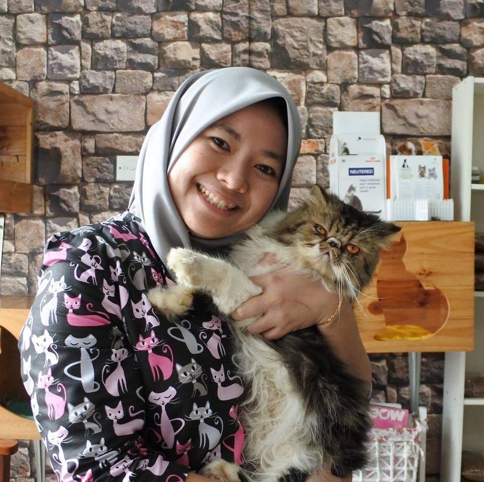 Cat hobby